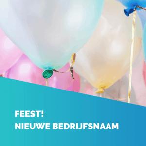 feest - FlowBizz